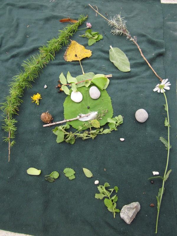 Gozdne ustvarjalnice: zgodbe iz narave