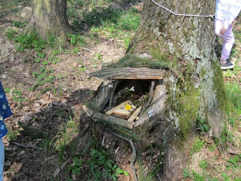 Gozdne ustvarjalnice: palčki